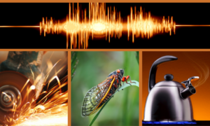 A collage representing how tinnitus sounds to different people